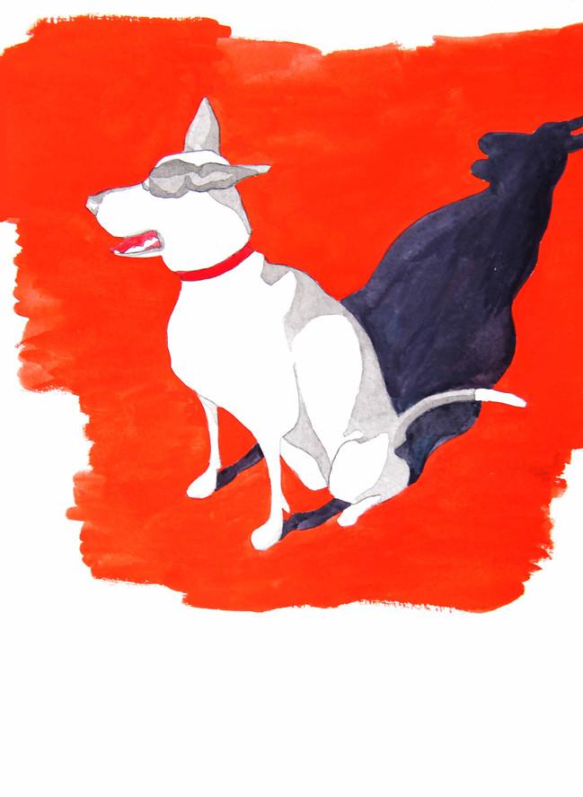 Desert Dog, 2014