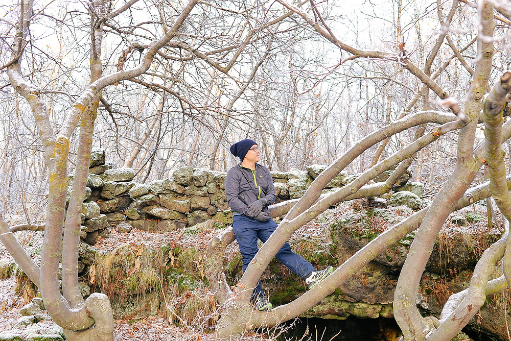 Posing on a big tree. - Photo credited to Hybrid.