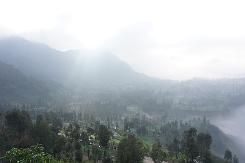 The mist start to fade from the village.