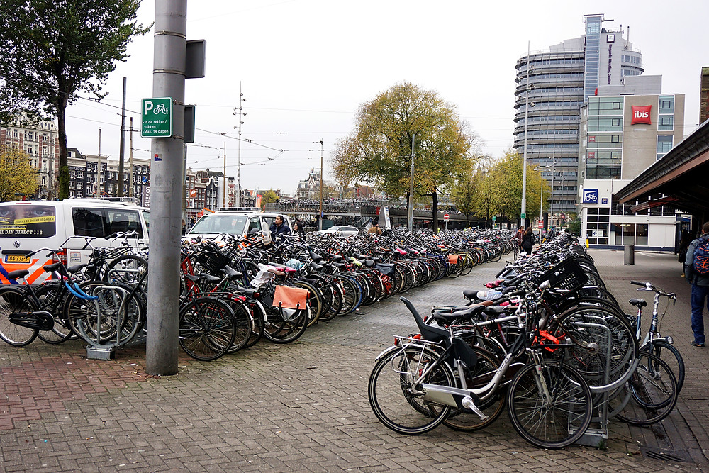 Very bicycle friendly city, can see a lot of cyclist around.