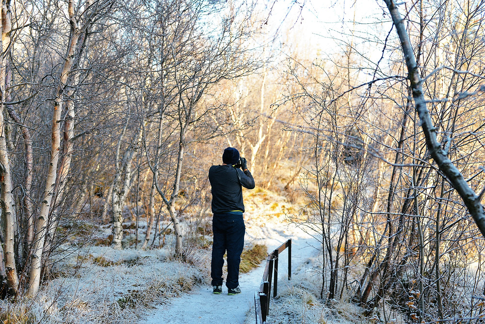 Taking the photo of the great walk path. - Photo credited to Hybrid.