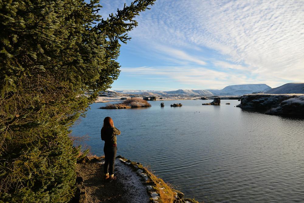 Ying Ying enjoying the view. - Photo credited to Hybrid.