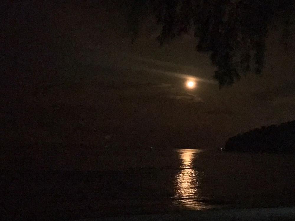 很美的月光照映海面,真的可惜拍不出那个美。