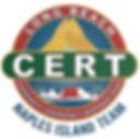 LB CERT-Naples _TEAM_ Logo.jpg