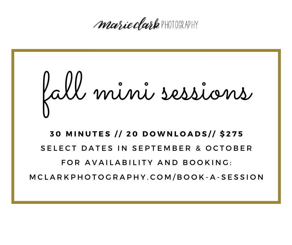 Fall Mini sessions.png