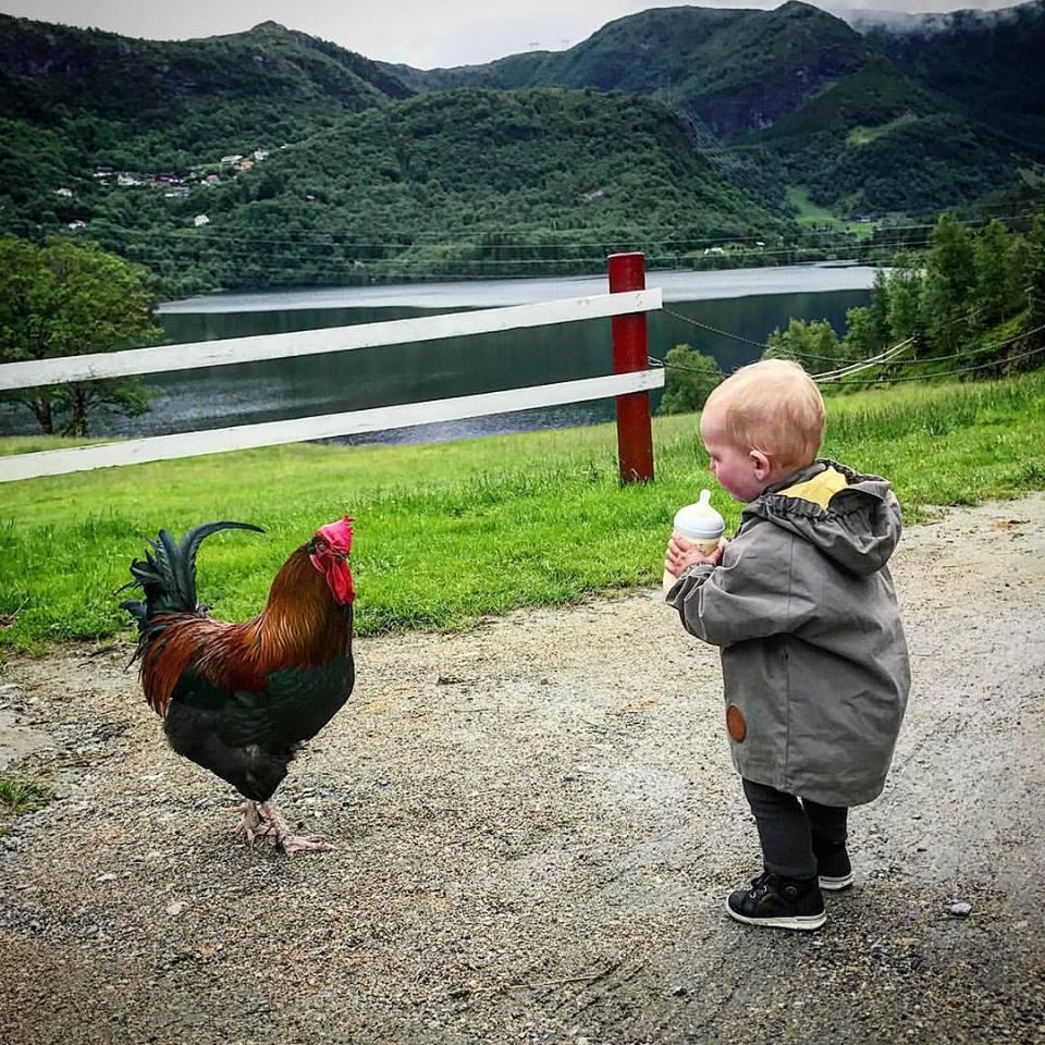 Barnebursdag på Øvre-Eide Gård