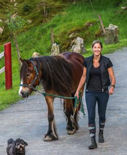 Hest på Øvre-Eide Gård
