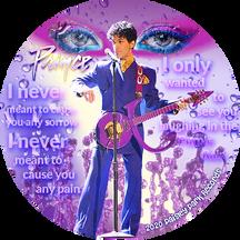 Vinyl LP Record Graphic Design