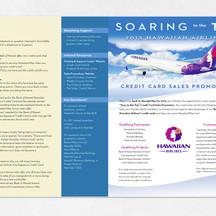 Campaign Program Flyer