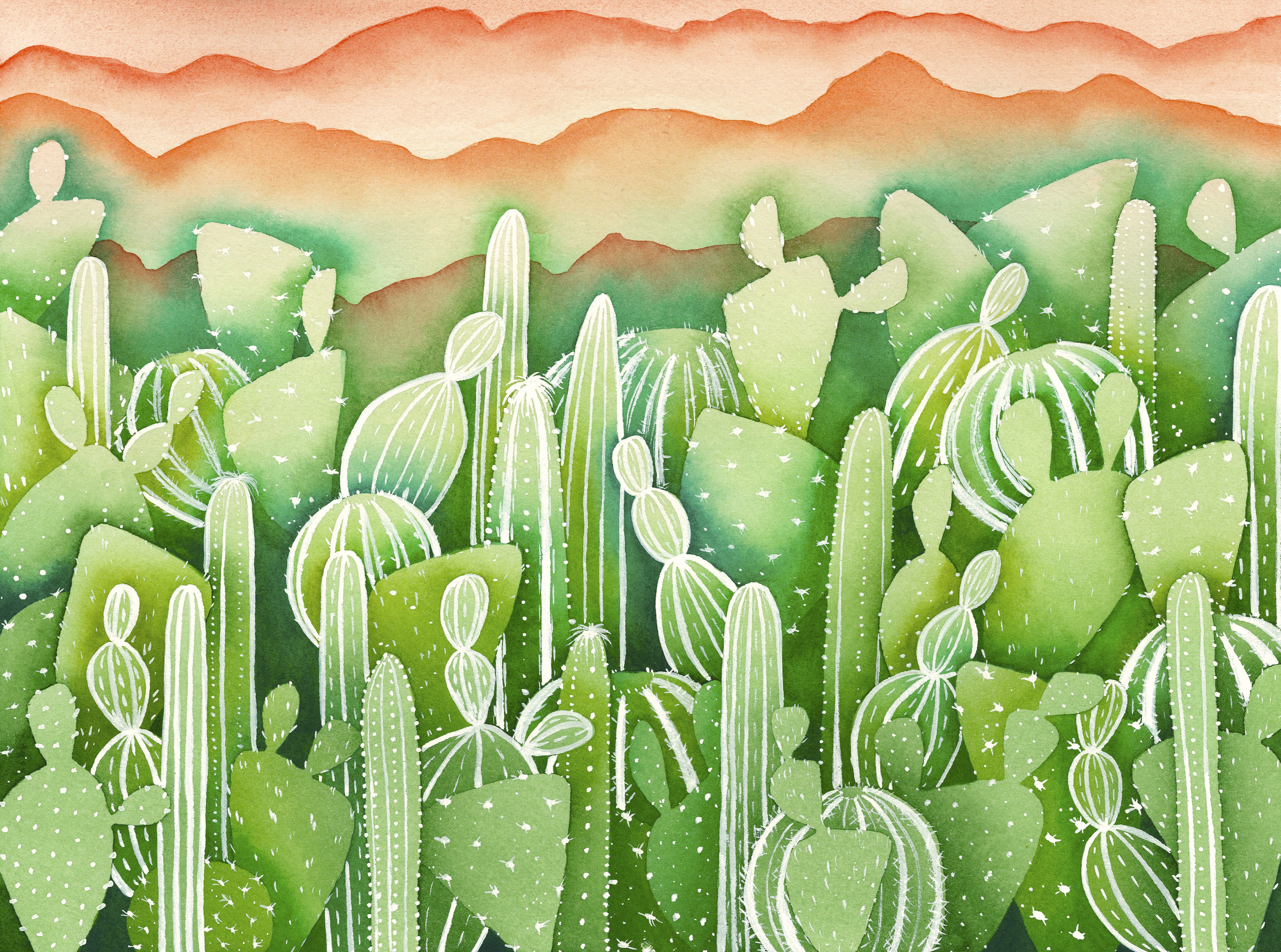 green cacti forest