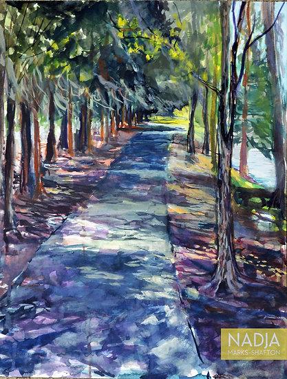 Cypress Path Original