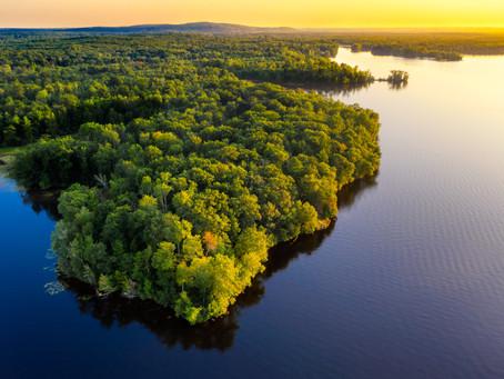 WORLD RAINFOREST DAY: Take a breath, thank the rainforest