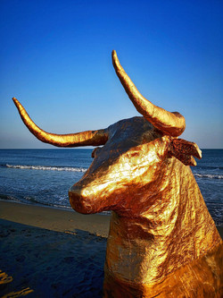 TORO d'OR plage