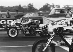 1981, DRAGRACE