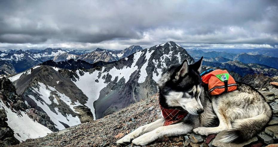 Miles on top of Gardner Mountain's summit
