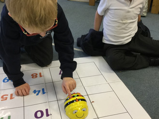 Cygnets and the Beebots