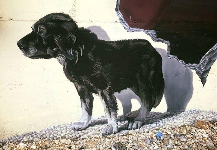 כלב  ציור קיר ריאליסטי תלת מימד בצבעים אקרילים שיר למדן Shir Lamdan גודל: 1x1.5 מטר רמת פירוט: בינונית - גבוהה משך עבודה: יום מחיר: 1000 ש״ח