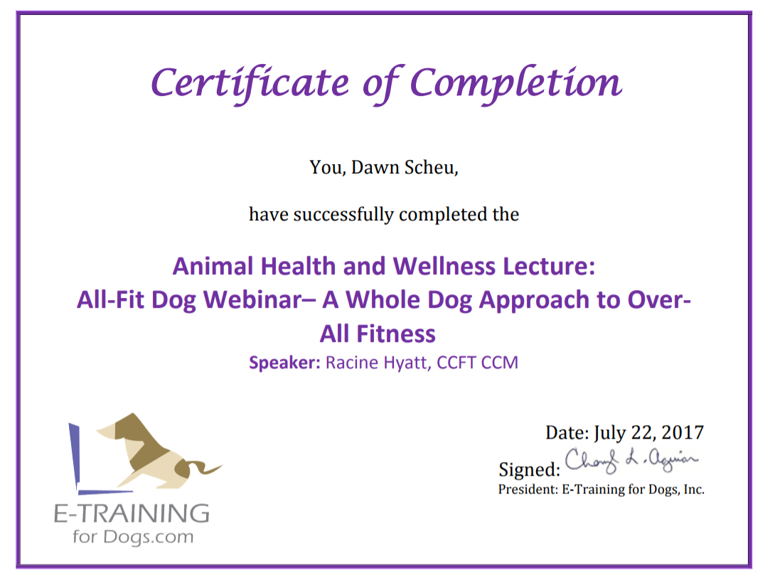 Etraining All Fit Dog