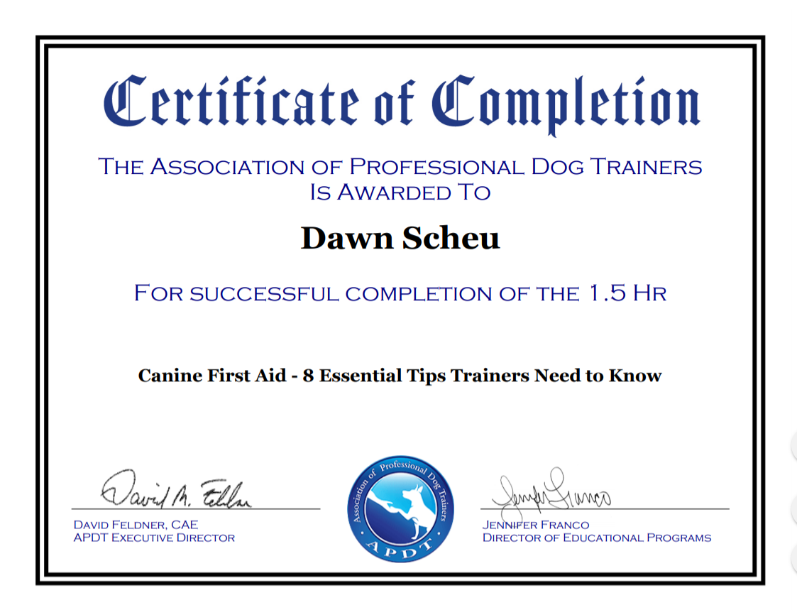 APDT first aid cert.PNG