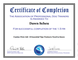 APDT first aid cert
