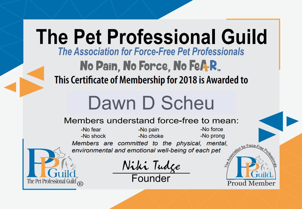 PPG Member Certificate