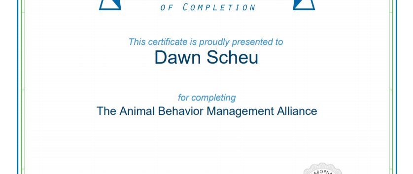 ABMA Certificate.PNG