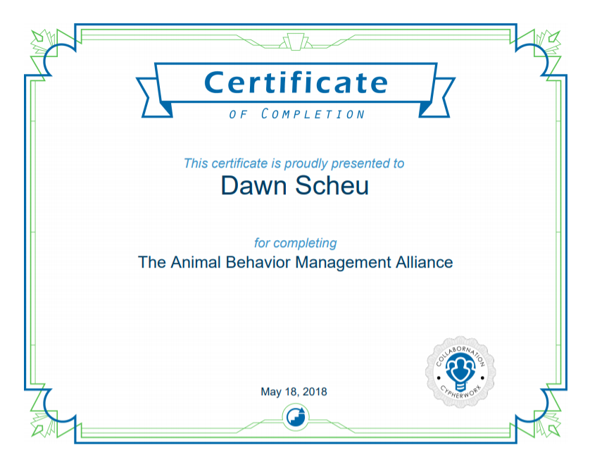 ABMA Certificate.PNG