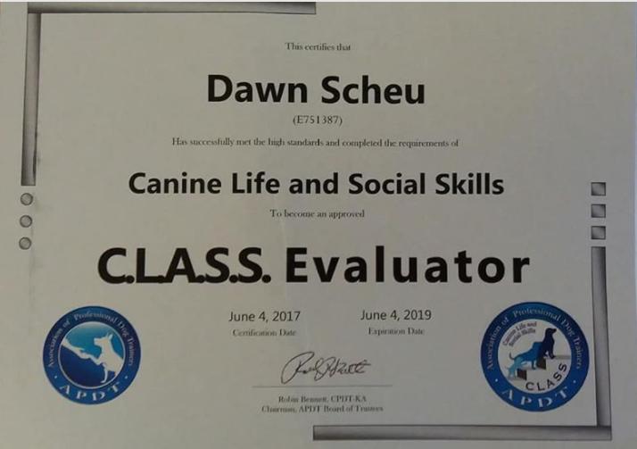 CLASS Evaluator.PNG
