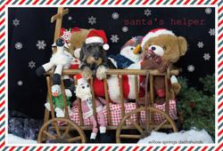 holiday-santashelperzsazsa