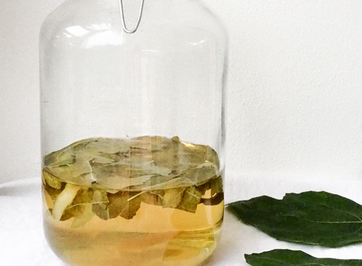 Fig Leaf Wine