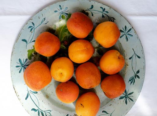 Apricot & Lavender Jam, Provencal Dreams & Duvets