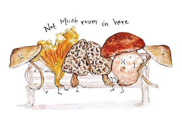 Not Mush-room in Here