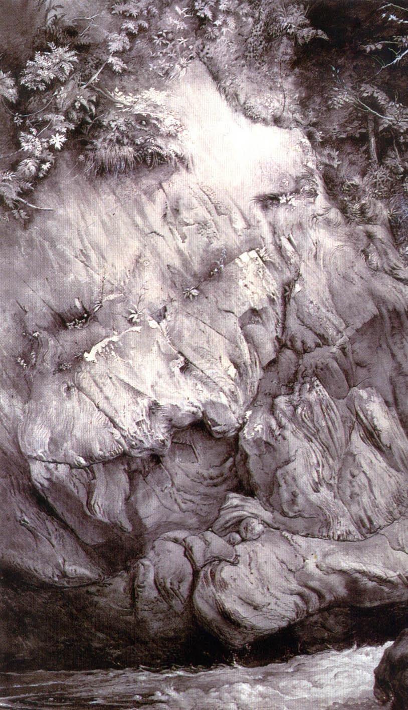 """Study of Gneis Rock."" John Ruskin."