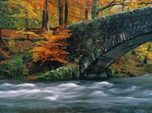 Cumbrian bridge.jpg