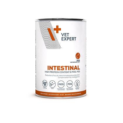 Intestinal Dog konzerv  400g