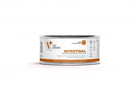 Intestinal Cat konzerv 100g
