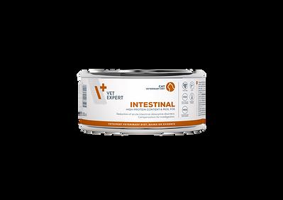 Intestinal%20Cat_can_100g_20191009_edite