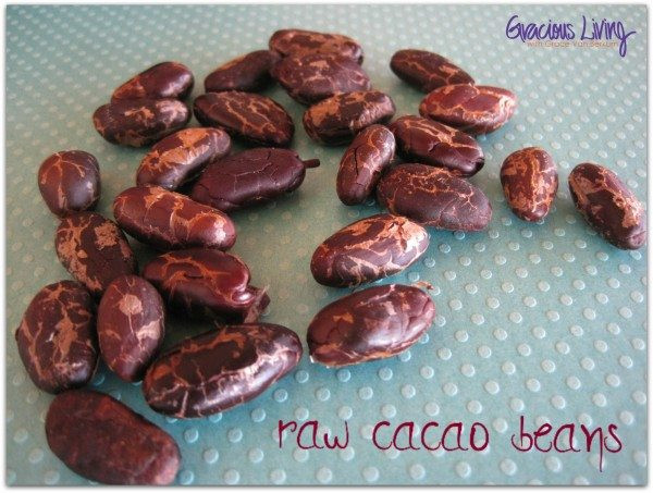 Gracious Living Chocolate Espresso Smoothie-raw-vegan-Grace Van Berkum