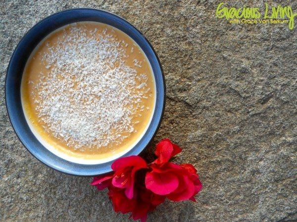 Grace Van Berkum-Gracious Living Orange Creamsicle Pudding Recipe