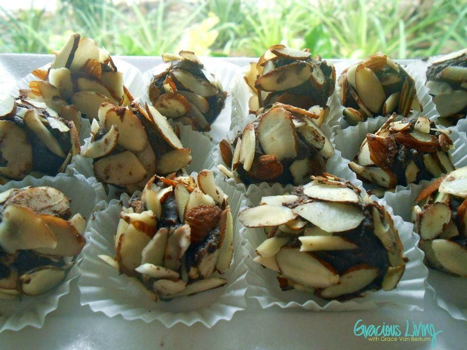 Grace Van Berkum-Gracious Living-Sunwarrior cacao protein balls