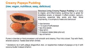 Grace Van Berkum-Papaya Pudding-Sivananda Bahamas Yoga Ashram