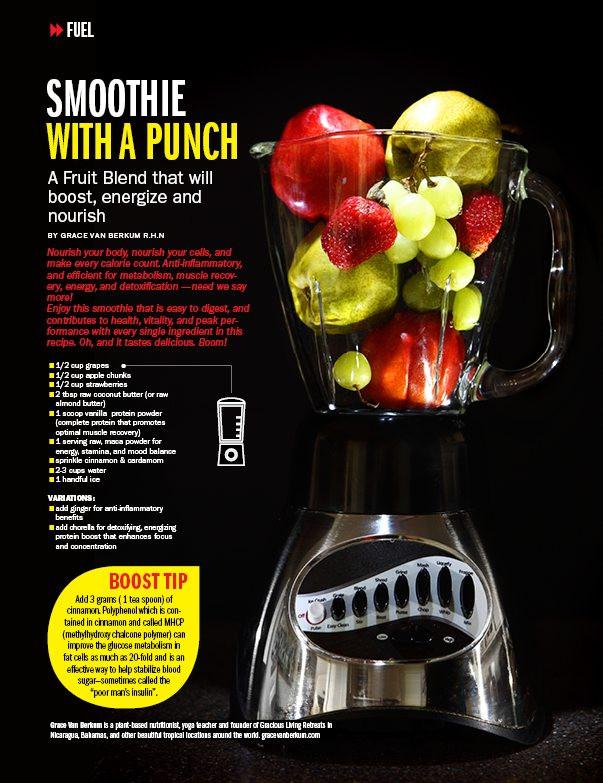 Gracious Living Fruit Power Smoothie