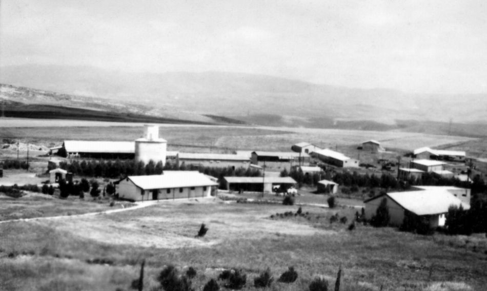 מבט לכיוון מרכז הקיבוץ 1956