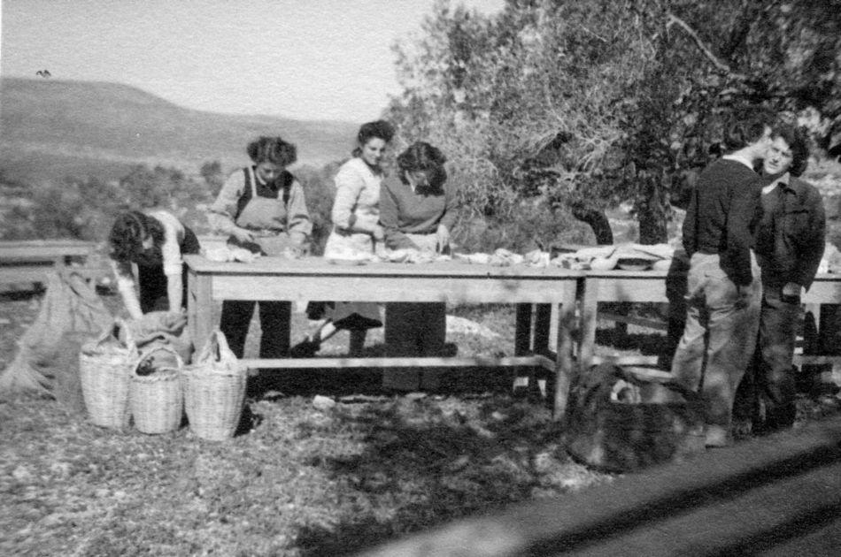 מכינים כיבוד ביום העליה 1949