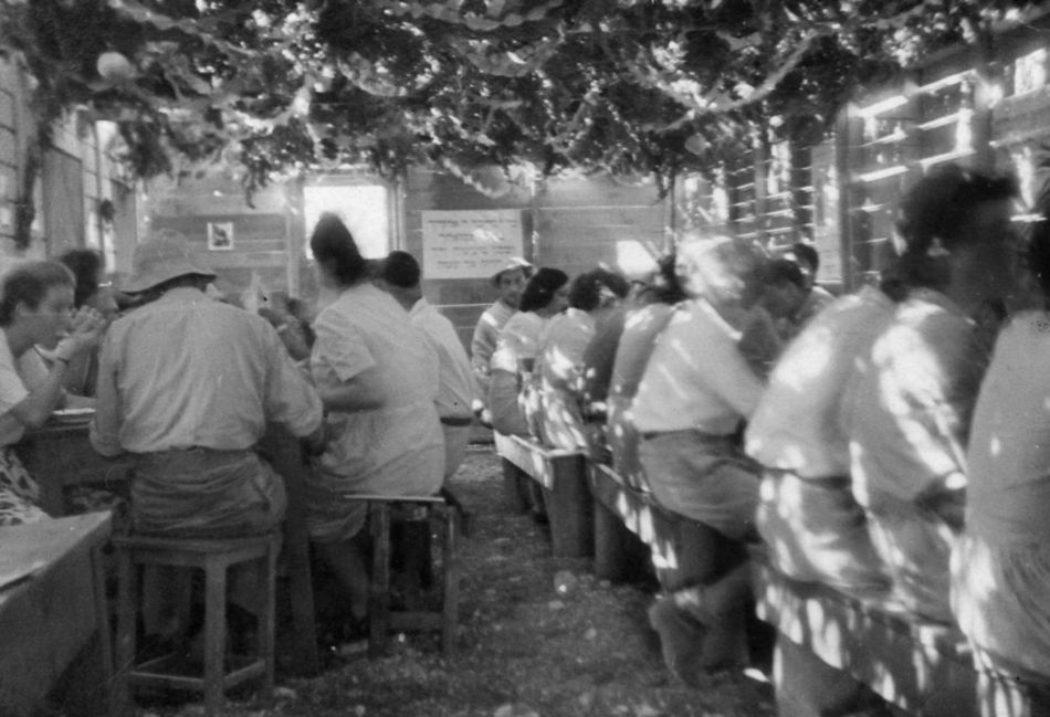 הסוכה הראשונה 1950