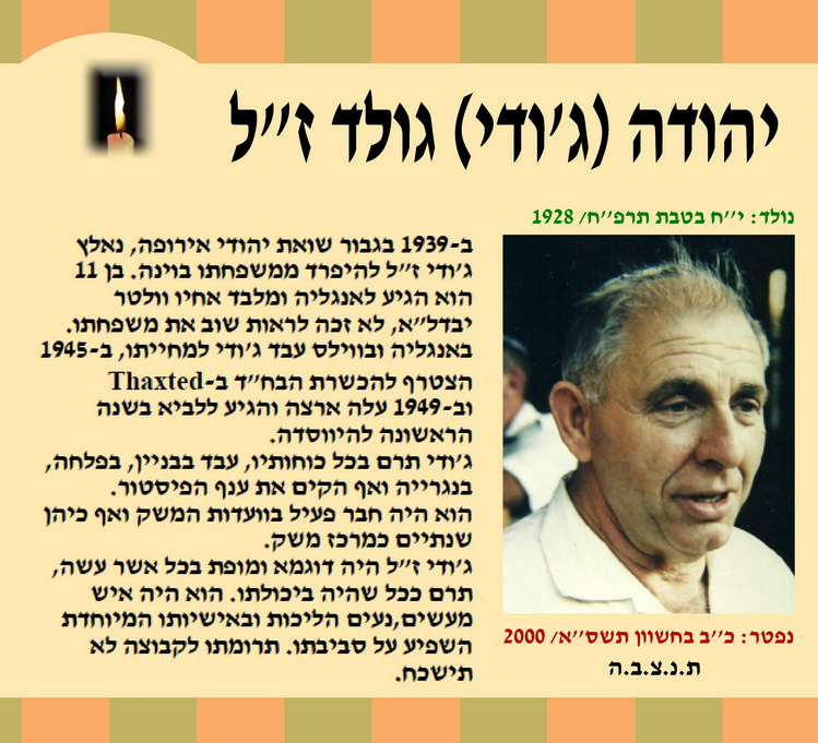 יהודה גולד