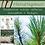 Thumbnail: Nadelbäume & Heilpflanzenrezepte