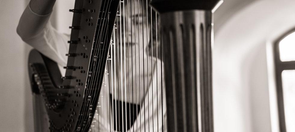 Portret Miruna 2019, Peles.jpg