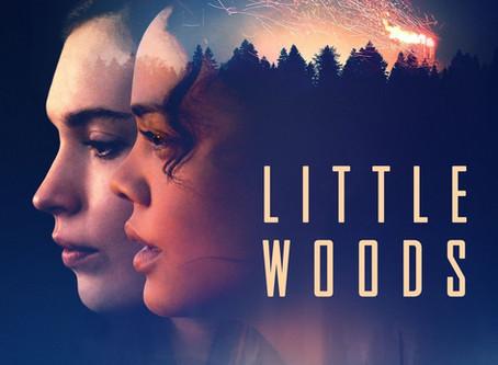 Nia Dacosta talks Little Woods