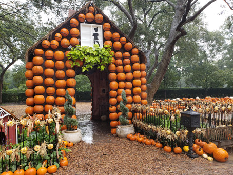 Halloween to do List: The Dallas Arboretum and Botanical Garden
